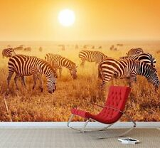 African Safari Zebras Wall Mural Photo Wallpaper Sunset