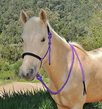 Padded rope halter and lead set PURPLE/black,MINI/ SHETLAND/PONY/COB/FULL
