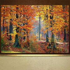 Autumn Woods poster print wall art  wall decor