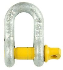 2x Pinnacle D SHACKLE Heavy Duty Galvanised Finish AUST- 6mm, 8mm, 10mm Or 13mm