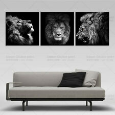 3 Panels Lion king canvas art modern abstract painting wall pictures for living