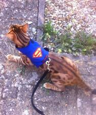 Mynwood Cat Walking Jacket Harness Vest Holster Superhero