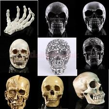 Halloween Decor Resin Replica Human Anatomy Skull Realistic Cranium Skull