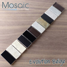 Evolution Beige Mixed Mosaic - Glass, Stone & Chrome Effect Mosaic Border Tiles