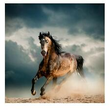 20/30/40/50/60cm Modern Unframed Canvas Wall Hanging Painting Picture Horse