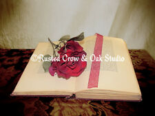 Red Rose Flower Book Red Ribbon Home Decor Library Art Matted Picture USA A224