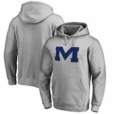 Fanatics Branded Ole Miss Rebels Ash Primary Team Logo Pullover Hoodie