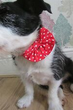 """Dogs fancy bow Tie Dog Collar unique from Mrs Nibbles size 8""""-13"""" neck"""