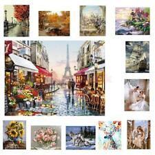 """Large Canvas Art DIY oil painting, paint by number kits - Natural Figure 16*20"""""""