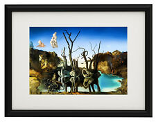 "Salvador Dali Swans reflecting canvas print framed giclee 12,8""x16,7"" poster"