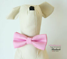 Small dog bow tie collar, Bow attached to collar, Puppy, Cat accessory