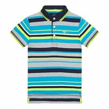Bluezoo Kids Boys' Multi-Coloured Striped Polo Shirt From Debenhams