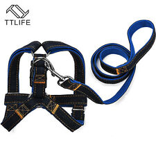 Dog Leash Harness Denim Collar Adjustable Pet Heavy Duty Training Adjustable RL