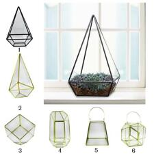 Modern Metal Glass Plants Terrarium Box Halloween Tealight Candle Holder