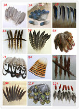 Wholesale 100 PCS beautiful pheasant tail peacock feathers 4-20cm/2-8 inch