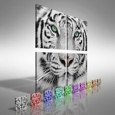 Beautiful Tiger Face Square Quad Canvas Print Large Picture Wall Print