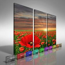 Poppy Field At Sunrise Treble Canvas Print Large Picture Wall Print