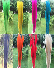 beautiful 10-100pcs natural pheasant tail feathers 20-22 inch / 50-55 cm