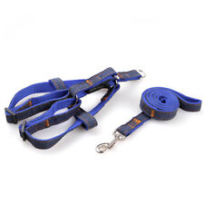 Pet Dog Leash Denim Harness Collar Adjustable Training Walking Rope Supplies
