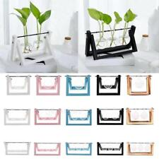 Tabletop Glass Tabletop Hydroponic Flower Vases Wooden Tray with 1/2/3 beakers
