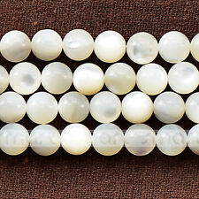 """White Natural Shell Round Loose Gemstone Beads 15.5"""" One Strand 4 6 8mm"""