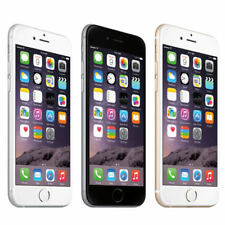 Apple iPhone 6  64GB 4G LTE Factory Unlocked Smartphone Grey/ Gold Perfect