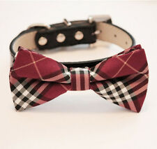 Red dog Bow tie collar, Leather collar, Red and Black bow, Puppy, Burgundy
