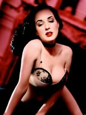 Dita Von Teese Boobs Bra Wall Print POSTER CA