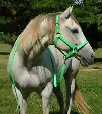 *COB SIZE* Any COLOR Horse HALTER & LEAD for Turnout Show BETA BIOTHANE