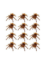 24 FLAT BROWN TARANTULA SPIDER EDIBLE CUP CAKE TOPPERS BOY PARTY DECORATION Z13