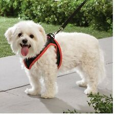 Mesh Dog Harness with Leash, Harness Is Safer, Comfortable, And Gentle To Dogs