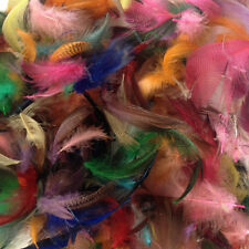 10 GRAMS MALLARD DUCK FLANK FEATHERS - millinery, art, craft, dreamcatchers
