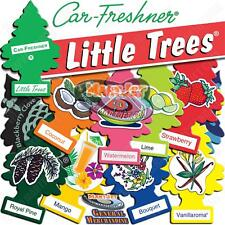Little Trees Air Freshener Fruit Berry Flower Hanging Hang Car Auto Home Office