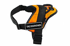 DT Fun Dog Harness Orange Reflective Trim Velcro Fun Patch THE DOGFATHER