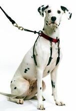 Sporn Halter Harness Dog - Stop Pulling w/ No Choke Collar - All Sizes