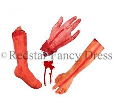 SEVERED BODY PART LIMBS GORY REALISTIC LOOKING HALLOWEEN PROP HAND FANCY DRESS