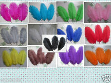 Wholesale! 10/20/50 pcs beautiful 6-8 inches / 15-20 cm ostrich feathers