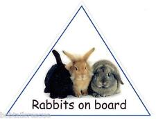 Rabbits on Board car carrier carry box sign - 100% CHARITY