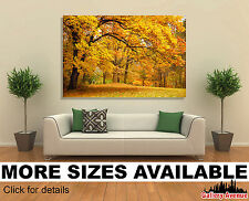 Wall Art Canvas Picture Print - Autumn Gold Trees 3.2