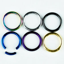 Segment CBR Captive Bead Ring Titanium Plated Stainless Steel Lip Nipple Earring