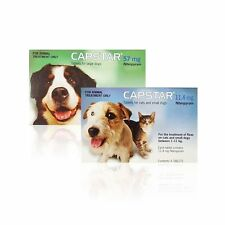 Capstar Tablets Flea Treatment For Cats And Small Meduim Large Dogs 6 Tablets