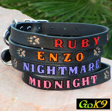 "LARGE LETTERS 1"" BLACK Leather Dog Collar, Personalized Pet Name w/ Opt. Phone #"