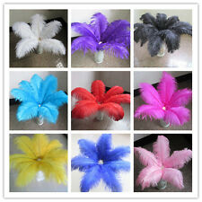 Free shipping! Beautiful ostrich feather  6-24 inches / 15-60 cm, color choices