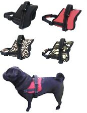 Dog Harness Control S M Small Breeds Adjustable - Support Comfy Pet Training