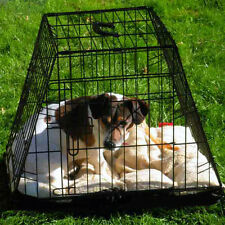 Durable 2-Door Sloping Car Dog Crate by PetPlanet - Small