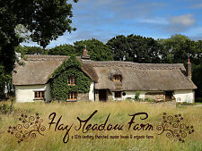 Easter Weekend Break - Peaceful B&B C12th Thatched Cottage Devon/Cornwall Border