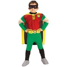 Robin Costume Kids & Toddler Batman Superhero Halloween Fancy Dress Up