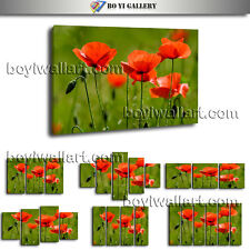 Modern Wall Art Poppy Flower Living Room Decor Large HD Pictures On Canvas Print