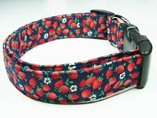 Charming Navy Blue w/ Red Strawberries and White Flowers Standard Dog Collar