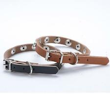 Puppy Pet Dog PU Leather Rivet Dots Adjustable Collar Buckle Neck Strap XS-L F89